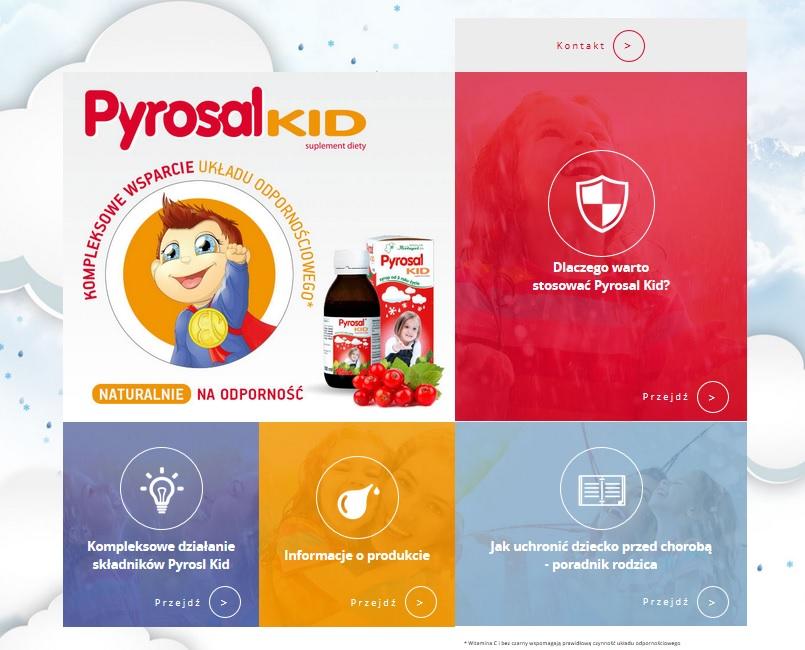 screenshot www.pyrosalkid.pl